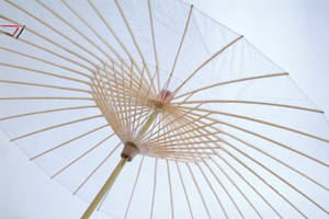 Brelli® Umbrellas and Parasols with Style - Transparent with UV Protection