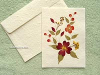 Wholesale Pressed Flowers Greeting Cards, Handmade Botanical Art Cards on Saa Paper