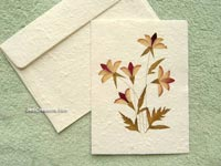 SAACA-BFL103 Saa paper greeting card decorated with dried flowers - manufacturer, exporter, wholesale directly from Thailand