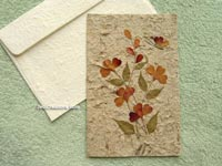 SAACA-BFL108 Saa paper greeting card decorated with dried flowers - manufacturer, exporter, wholesale directly from Thailand