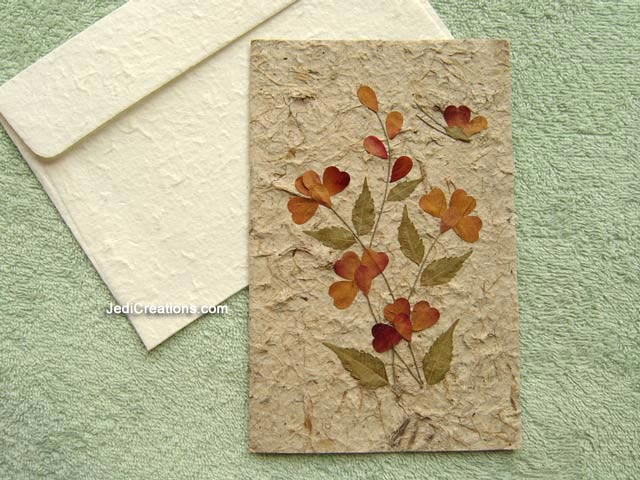 Wholesale greeting cards with pressed flowers jedicreations image saaca bfl108 wholesale greeting cards with pressed flowers on natural saa paper m4hsunfo