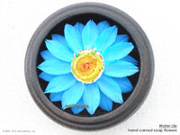 Blue-yellow Water Lily soap flower